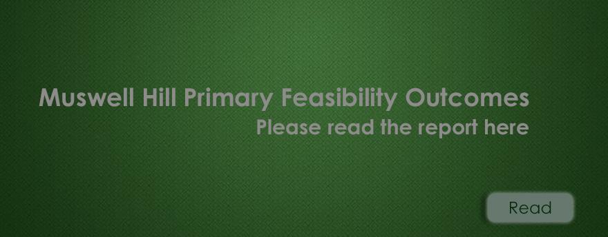 Feasibility Outcome